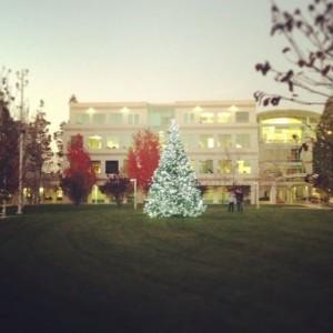 christmastreeapple